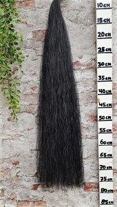 Z-11 Zachte zwarte staart.